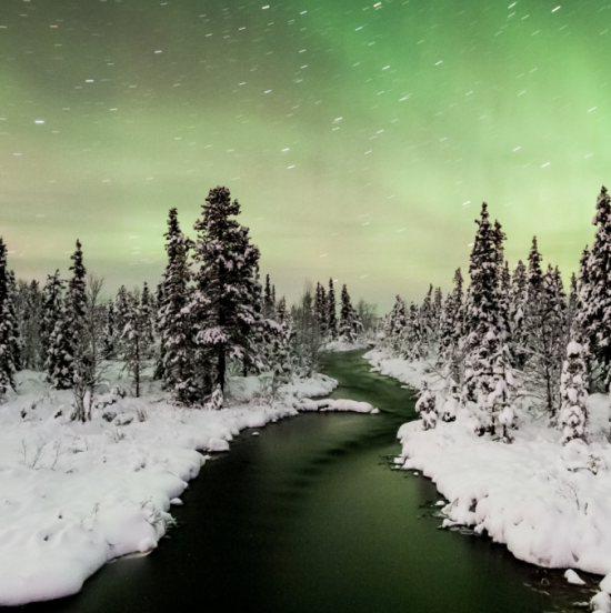 Shades of green reflected by the Northern Lights