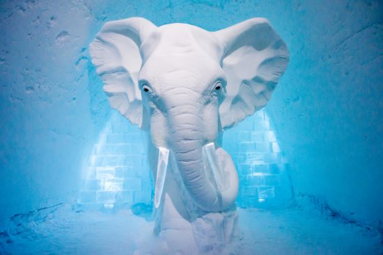 There is an Elephant in the Suite at the Icehotel. The  designs change every year!