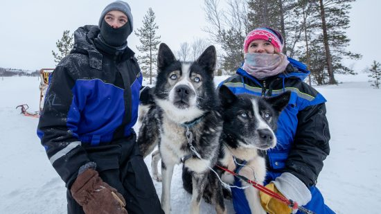 Up close with the Huskies. When staying at the Snowhotel you have unlimited access to the dogs to give them  lots of hugs.